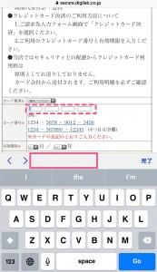 IMG_3833 - 20150128
