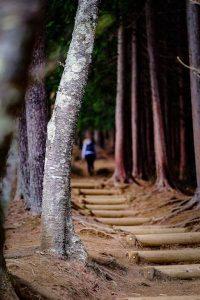 森のなかに入っていく女性