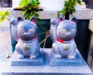 2匹の招き猫の写真