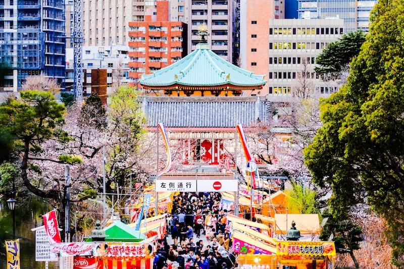 [写真日記]上野恩賜公園の桜としらす