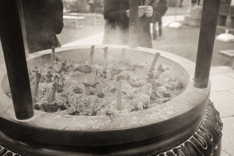 [写真日記]桜と香炉とひまわり