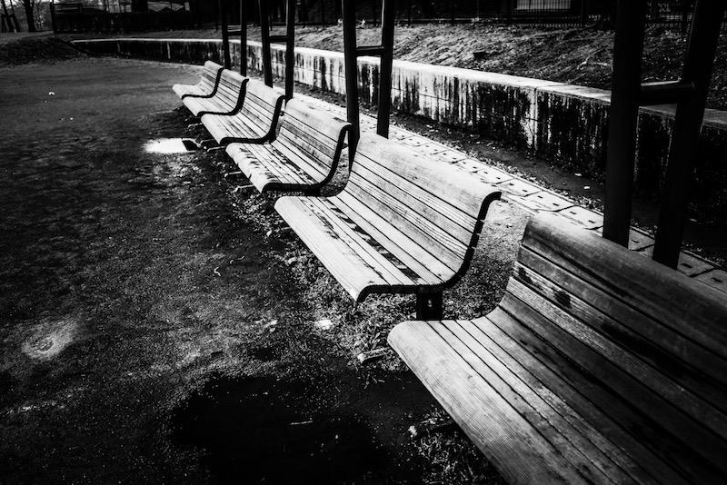 [写真日記]ベンチと階段とひまわり