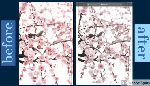 [写真日記]noteに写真を投稿すると色が変わる悩みの話。(追記あり)