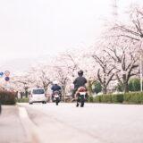 [写真]水無川の桜とある場所の桜(X-Pro3 )
