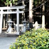 【CB250R】10月の山宮浅間神社と村山浅間神社のツーリング(富士山の構成資産)[バイクと写真]END